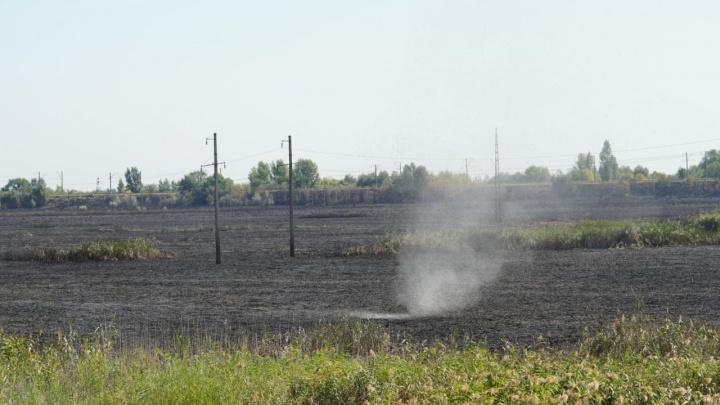 Выгорело пять гектаров: пожар на левом берегу Дона в режиме онлайн