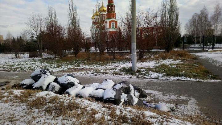 Возле главного собора левобережья два месяца лежит куча мусора