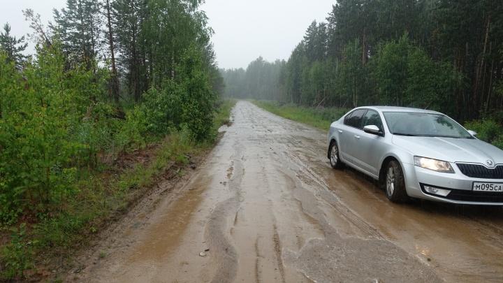 Лес и мох на 7 млн рублей:главу Шенкурского района будут судить за новую дорогу