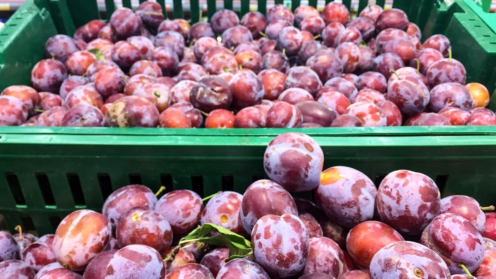 В Курганской области на фитосанитарном контрольном посту задержали 40 тонн фруктов без документов