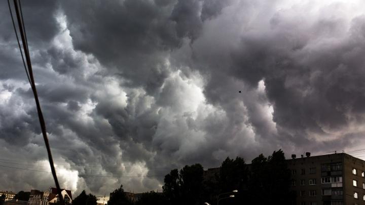 Экстренное предупреждение: на Ярославль обрушатся гроза и сильный ветер