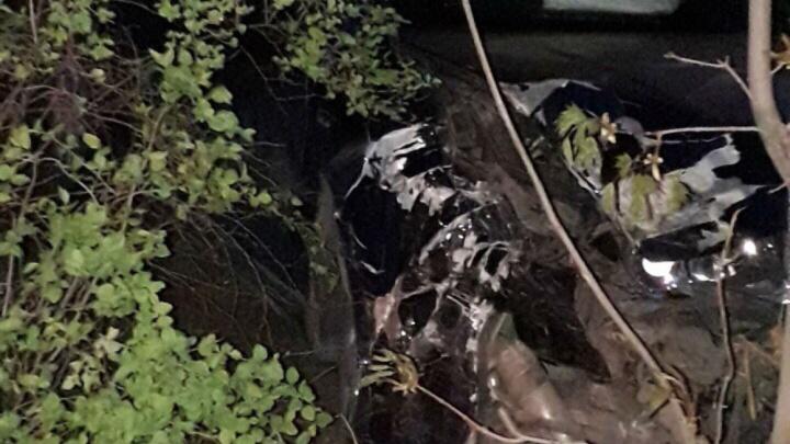 «Штормит основательно»: в Рыбинске пьяный водитель на скорости протаранил дерево. Видео