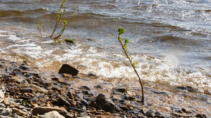 Жителей Волгоградской области попросили не заходить в опасную воду
