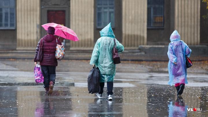 Сезон дождей объявляется открытым: в Волгоградской области серость и хмарь повоюют с весенним теплом