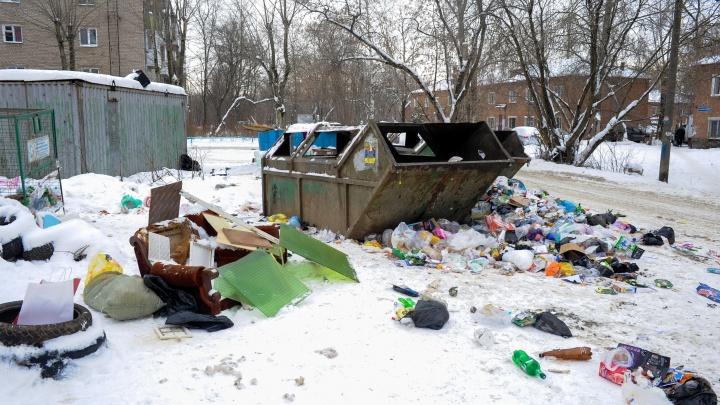 Более 200 жалоб на уборку: рассказываем, как проходят первые дни мусорной реформы в Прикамье