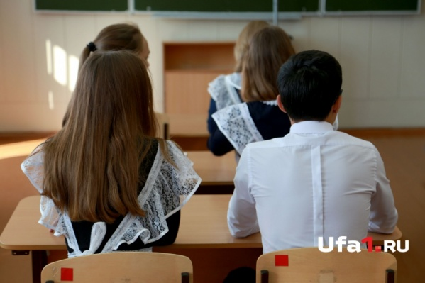 Экзамены принимали по обществознанию и литературе