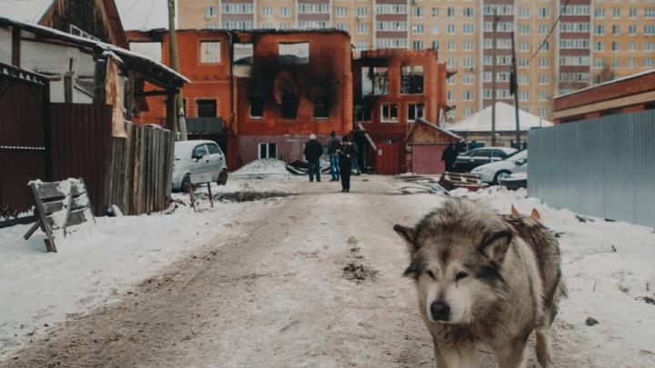 Нашли еще одного погибшего. Из-за пожара в хостеле на Кошевого возбудили уголовное дело