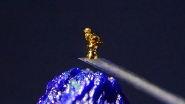 Фото:новосибирец сделал самый маленький памятник и попал в Книгу рекордов
