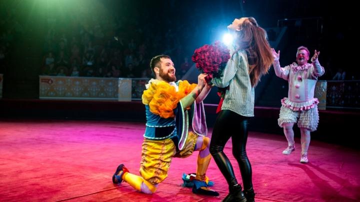 Во время представления в омском циркеакробат сделал предложение своей возлюбленной