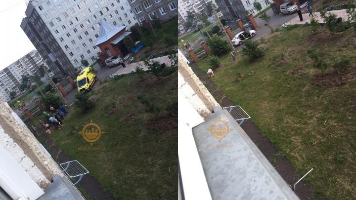 Ребенок выпал из окна второго этажа вслед за москитной сеткой
