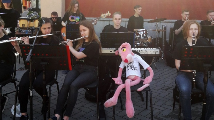 В НГТУ с оркестром и розовой пантерой началась приёмная кампания