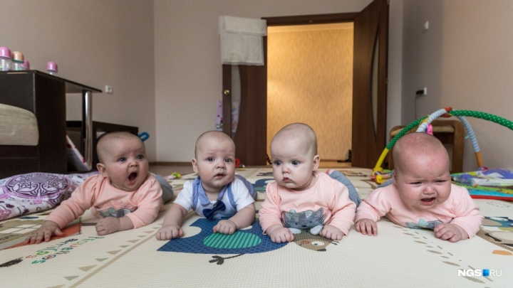 Лучшее за год. Гнездо аиста: фоторепортаж с семьей, где родилась четверня