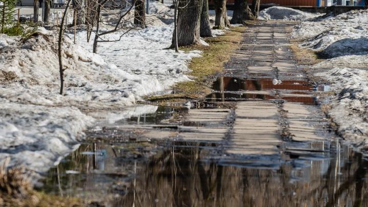 МЧС: в Прикамье ожидаются мокрый снег и сильный ветер