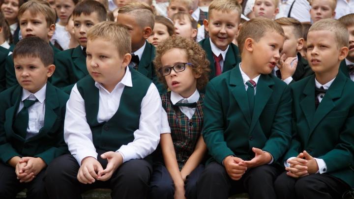 «Купила в интернете»: под Волгоградом учитель-универсал работала в школе с купленными дипломами