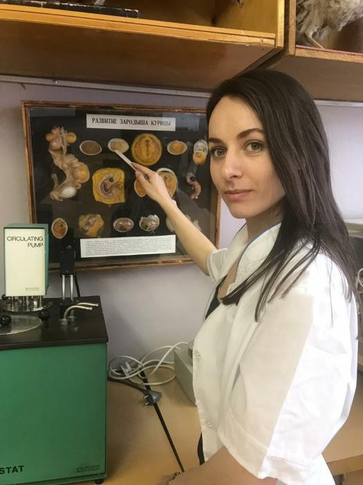 Уральские ученые научились получать жидкость из куриного яйца, которая идет на вакцины против гриппа