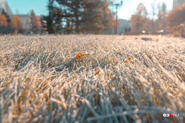 Синоптики не исключают, что заморозки могут повториться