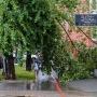 Жертва стихии: во время урагана на пермячку упал рекламный щит