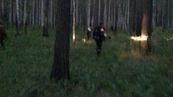 Поиски 4-летнего Димы возле посёлка Рефтинский приостановили из-за ливня