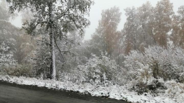 Зима близко: первый снег в Башкирии уже выпал, чего ждать в ближайшие три дня — рассказали синоптики