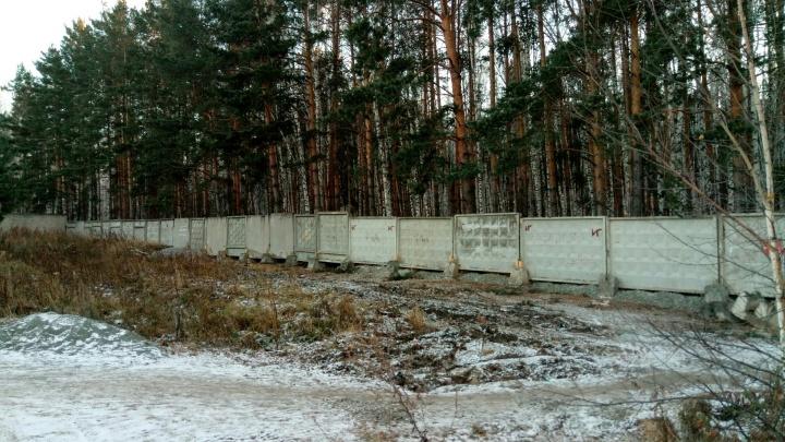 «Считают себя привилегированными»: народные тропы через парк в Челябинске перегородили забором