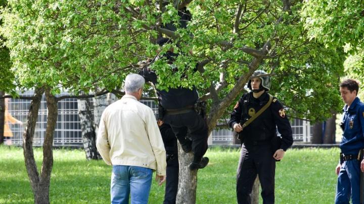Обвиняют в проникновении на режимный объект: подробности задержания активистки в сквере у Драмы