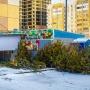 «Будем воспитывать продавцов»: в Челябинске начались рейды по незаконным ёлочным базарам