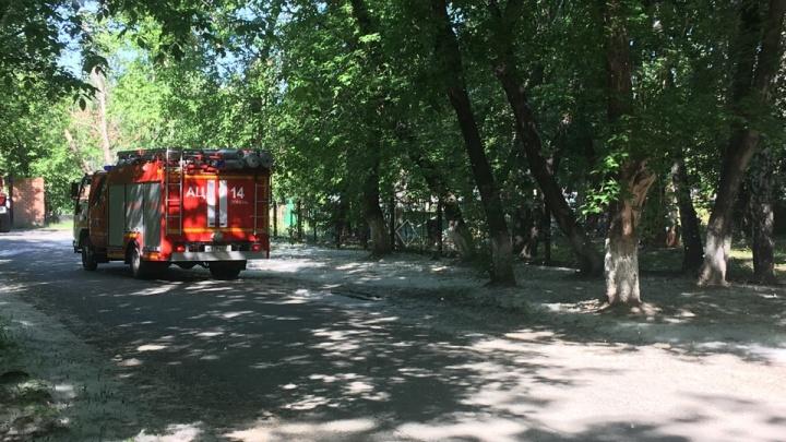 Пожарные дважды выезжали на Текутьевское кладбище, где кто-то поджигал тополиный пух