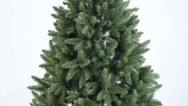 Ёлки зеленые: «Рич Фэмили» приглашает за покупкой новогоднего дерева
