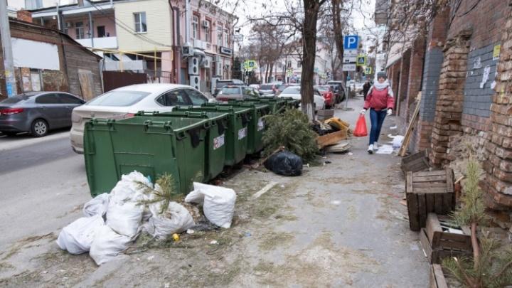 В Ростовской области не хватает половины мусорных контейнеров до норматива