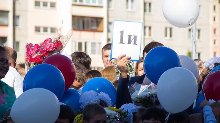 Школы Челябинской области будут принимать заявления в первые классы в электронном виде