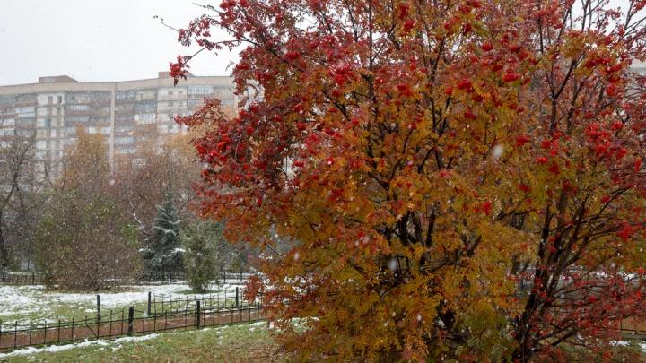 Бабье лето в Тюмени сменится снегопадами. Синоптики подробно рассказали, каким будет весь октябрь