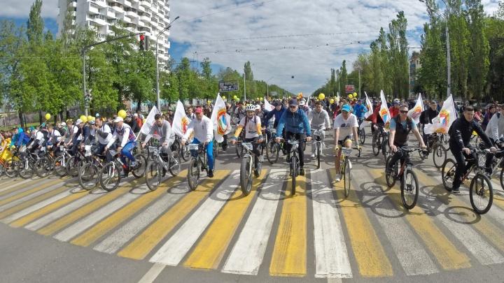 «А потом мы поняли, что можем это продавать»: на «Дне 1000 велосипедистов» будут платные номера