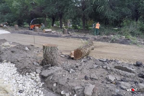 Больше 100 новых деревьев обещают посадить и возле храма