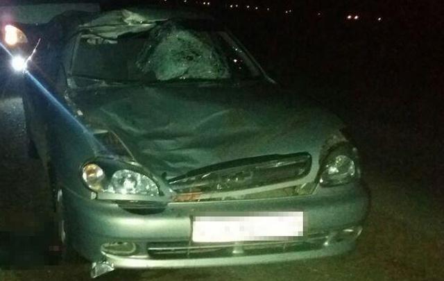 В Башкирии устанавливают личность погибшего под колесами иномарки пешехода