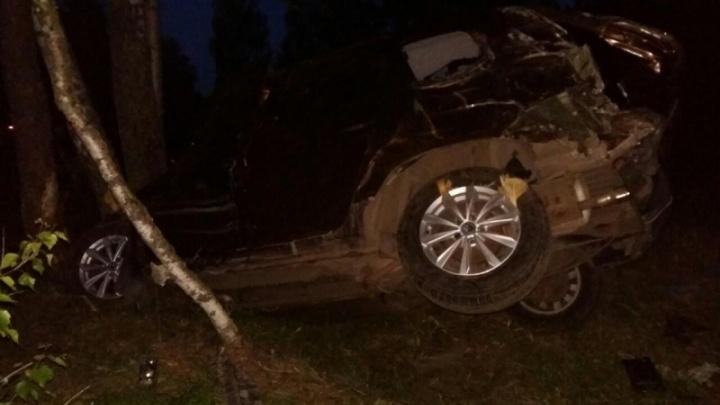 Подробности ДТП с лосем: в серьёзной аварии пострадали два человека