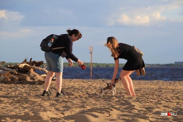 Пока о походах на пляж остаётся только мечтать. Как минимум две недели