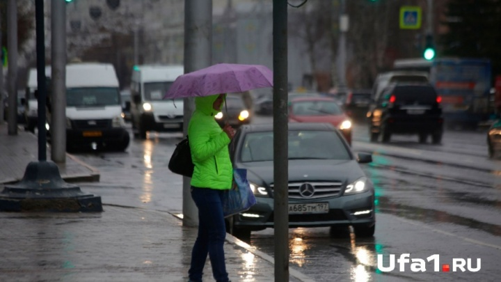 Гроза в конце апреля: в Башкирии прогнозируют дожди