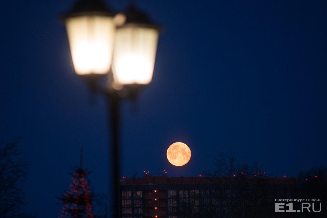 Луна становится кровавой раз в два-три года