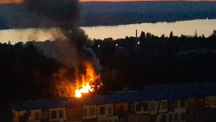 Очевидцы: на Пятой Просеке возле дома 125 горели деревья