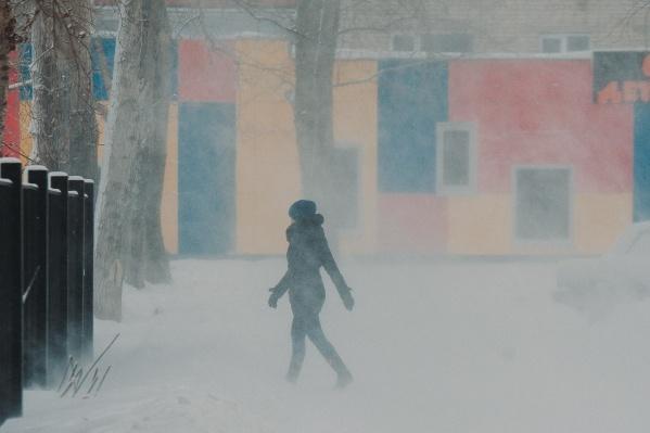 Тюменцы на этой неделе вспомнят о зиме