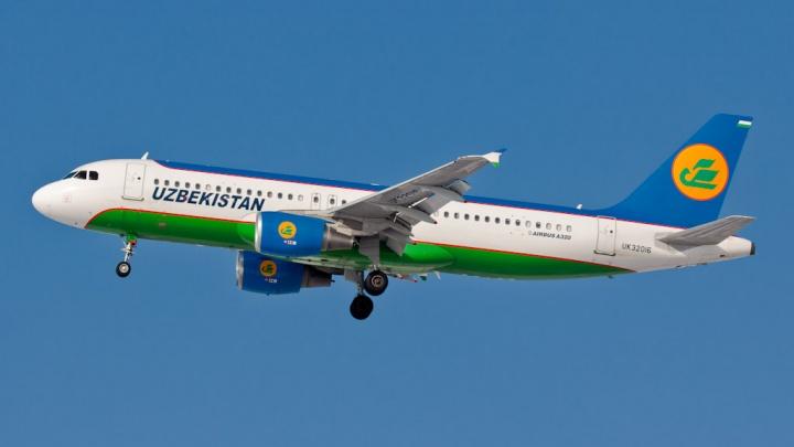 В Новосибирске из-за погоды на сутки задерживают рейс в Узбекистан: вылета ждут 145 пассажиров