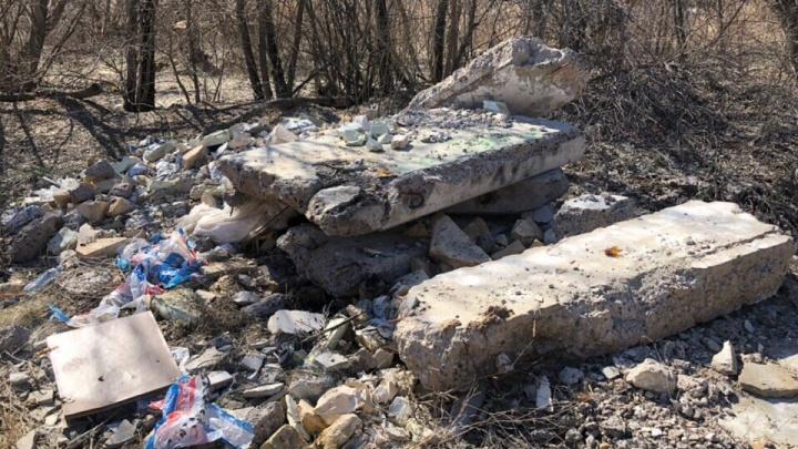«Либо сами экономят, либо обманули»: уютный лесок на западе Волгограда завалили строительным мусором