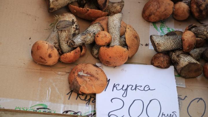 «Вкуснятина! Ням-ням!»: чем торгуют на рынке у «Диеты» и сколько это стоит