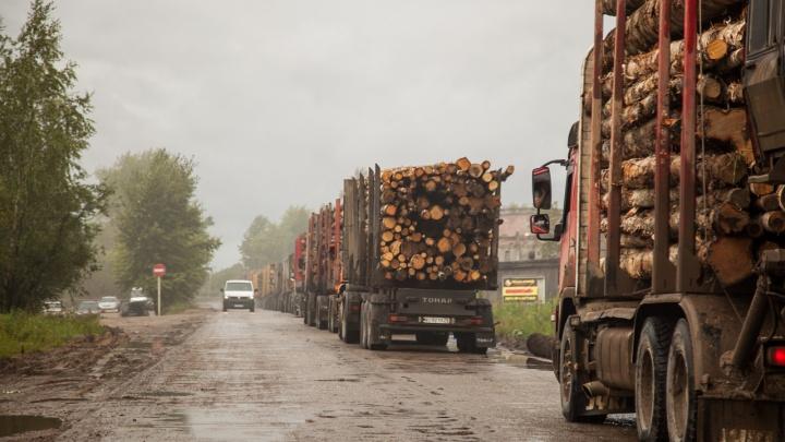 Весы на дорогах: в Архангельской области поставят новые комплексы для взвешивания автомобилей