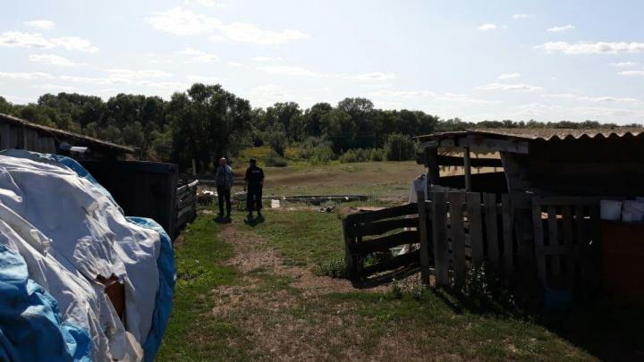 В Волгоградской области по факту исчезновения 16-летней девочки из Апатитов возбудили уголовное дело