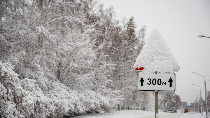 После Крещения в Новосибирскую область придут морозы до –28 градусов