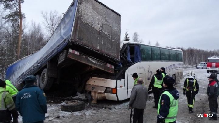 Минтранс РФ планирует усилить меры безопасности автобусных перевозок после ДТП под Краснокамском
