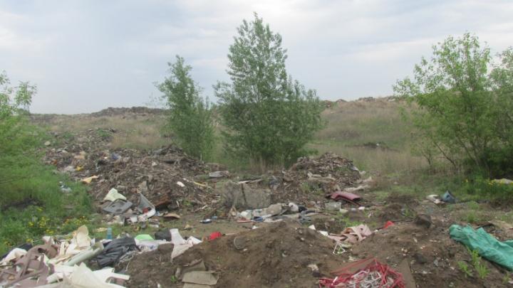 В Омске начнут рекультивацию старой свалки в Нефтяниках, которая загрязняла грунт фенолом и аммонием