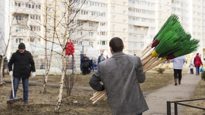 Субботник в Ярославле: куда жаловаться, если против воли заставляют выходить на уборку
