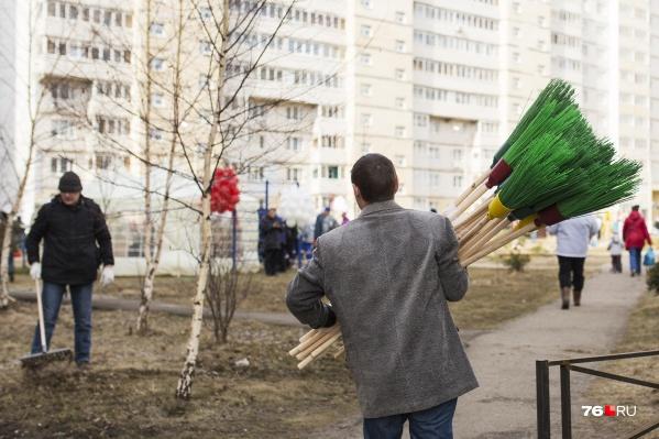 Власти пообещали, что в этом году не будут ярославцев принуждать выходить на субботники
